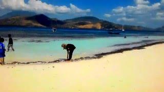 Video adonara my island NTT #mytripMyadventure download MP3, 3GP, MP4, WEBM, AVI, FLV Oktober 2018