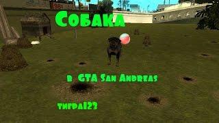 GTA San Andreas (собака)