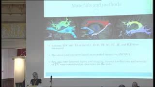 4 - N. Brandstack - Quantitative Diffusion-Tensor Tractography of TBI