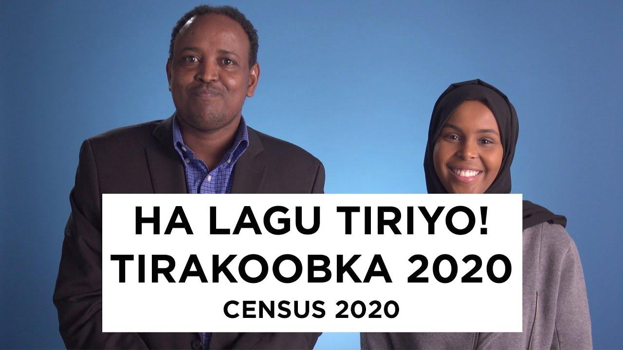 Download Ha lagu tiriyo! Tirakoobka 2020 – Census 2020 (Full)