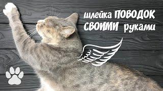 как сделать поводок для кошки своими руками в домашних условиях
