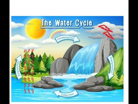 How to make a water cycle project - Simplified method with explanation