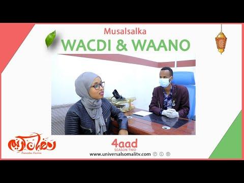 Musalsalka Wacdi & Waano 2021-Q4aad