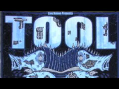 Tool - Sober (live Raleigh 93) - HQ audio