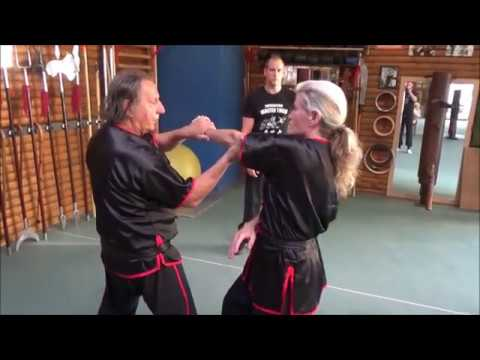 GM Walter Toch with a Wing Chun lesson