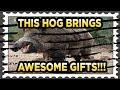 Mail Call - Gold Hog bearing Gifts!!!