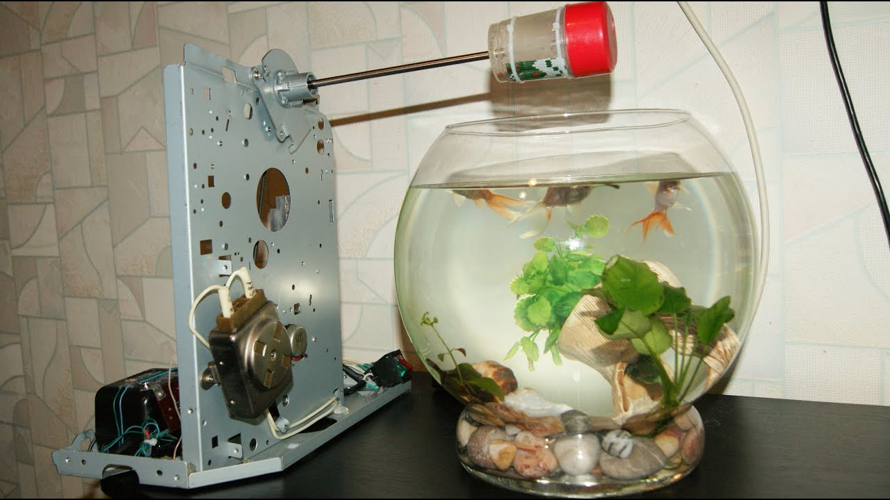 Кормушка своими руками для аквариумных рыб