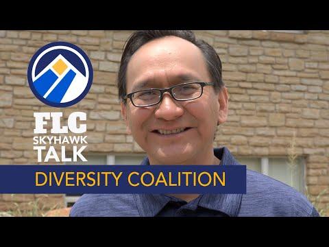 Diversity Collaborative: Skyhawk Talk