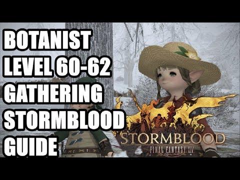 FFXIV Stormblood - Levelling Botanist Gathering Guide 60-62 - Gyr Abania - The Fringes - Commentary