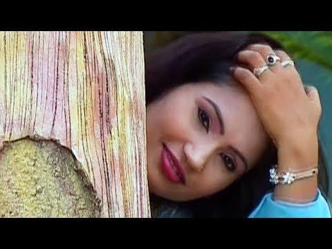 MAI TO APAN SAMAJH KE - SHIV KUMAR TIWARI & ANUPAMA MISHRA - DAGABAAZ - CG SONG