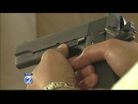 Hawaii could soon create database listing gun permit applicants
