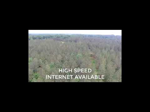 TRACT 3 BRASHER RD REAGAN TN  - 14.7 ACRES OWNER FINANCE TENNESSEE LAND FOR SALE