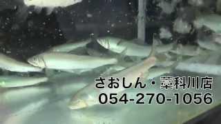 さおしん 静岡 藁科川 富沢にある釣具店さおしん さんの紹介です http:/...