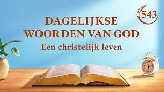 Dagelijkse woorden van God | Wees je bewust van Gods wil om volmaaktheid te bereiken | Fragment 543