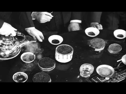 The United States Board of Tea Examiners, in New York, taste tea to decide on the...HD Stock Footage