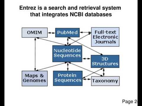 national center for biotechnology information ncbi ncbi nlm nih