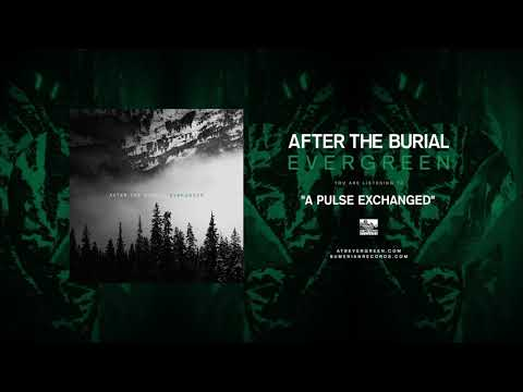 AFTER THE BURIAL - A Pulse Exchanged Mp3