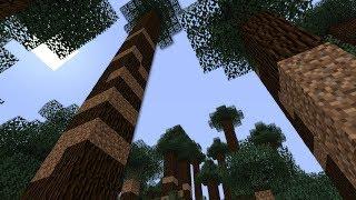 The Weirdest Minecraft Bug You'll Ever See (