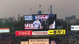 ゴールデンボンバー 樽美酒研二 ヤクルトスワローズ 神宮球場 つば九郎 ...