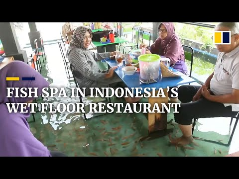 Fish Pedicures In Indonesia's Wet Floor Restaurant