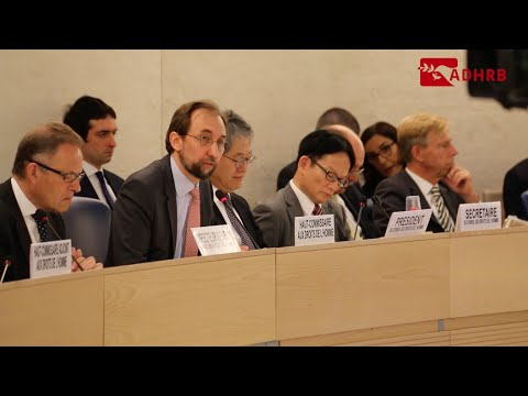 UN High Commissioner for Human Rights Report on Bahrain at HRC32