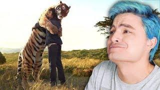 REENCONTRANDO SEUS ANIMAIS - Impossível não se emocionar