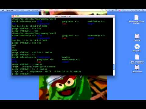 how to add a shell script