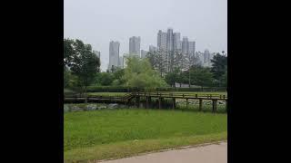 미세먼지 최고좋은날 산책!