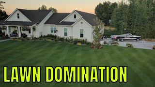 TOTAL LAWN DOMINATION // Kentucky Bluegrass thumbnail