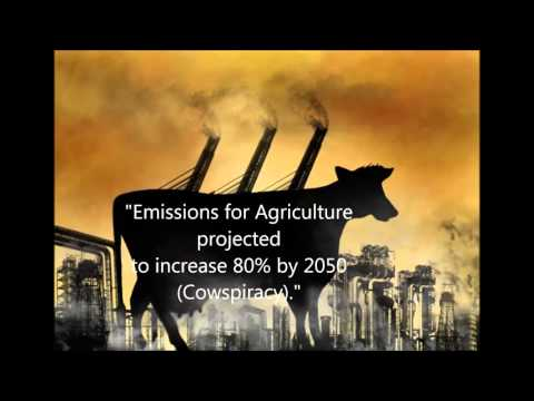 Animal Agricultures Role in Global Warmng