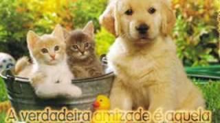 Repeat youtube video O Valor Da Amizade