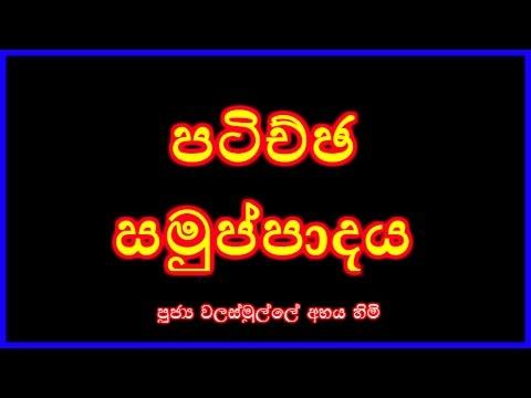 Patichcha Samuppadaya - Nirapekshathwaye Maga (Season 02) 01/03