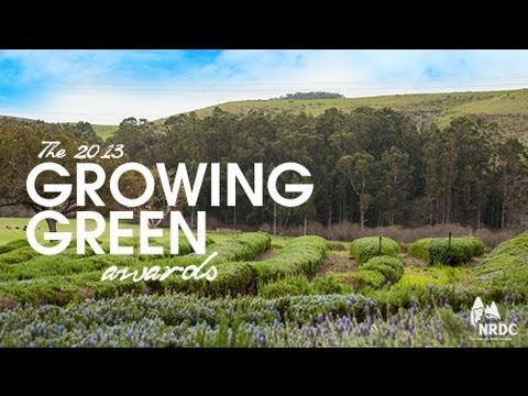 Winners of NRDC's 2013 Growing Green Awards