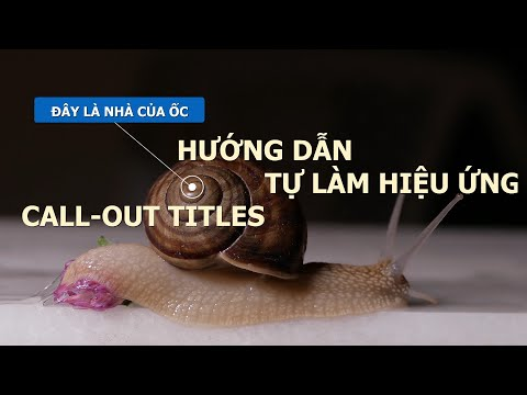 HƯỚNG DẪN HIỆU ỨNG CALL OUTS TITLES TRONG AFTER EFFECTS
