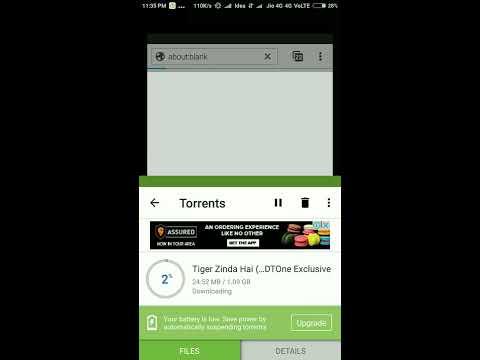 Tiger Zinda Hai 2017 Movie Free Download 720p BluRay
