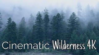 DJI Osmo / Phantom 4 PRO - Cinematic Wilderness 4k