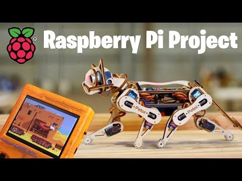 TOP 10 Raspberry Pi Projects - Maker Tutor