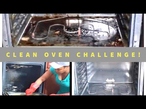 The Clean Oven Challenge- Self Cleaning Oven