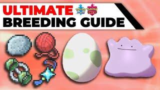ULTIMATE Breeding Guide: Perfect IVs, EVs, Natures, Hidden Abilities | Pokémon Sword & Shield