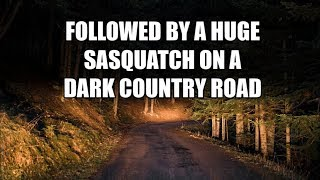 FOLLOWED BY A HUGE SASQUATCH ON A DARK COUNTRY ROAD - True Encounters With The Arkansas Bigfoot