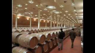 Bodega Finca Valpiedra (Fuenmayor - La Rioja)