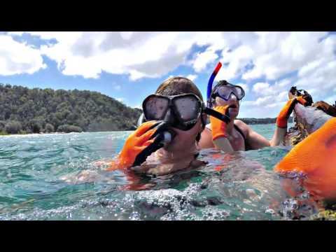 Australia 2015/16 - Morton Island & Noosa