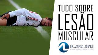 Mais rapidamente distendido a músculo ajudar um curar como