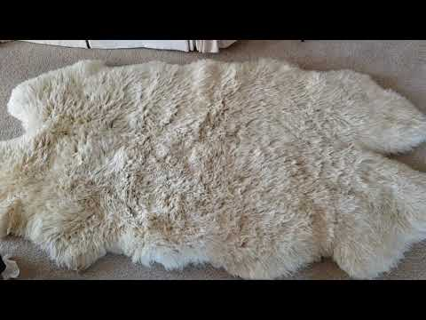 Cleaning process for Difficulty  with sheep skin area rug cleaning