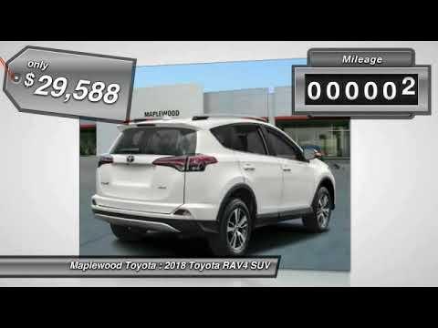 2018 Toyota RAV4 XLE Maplewood, St Paul, Minneapolis, Brooklyn Park, MN J10319