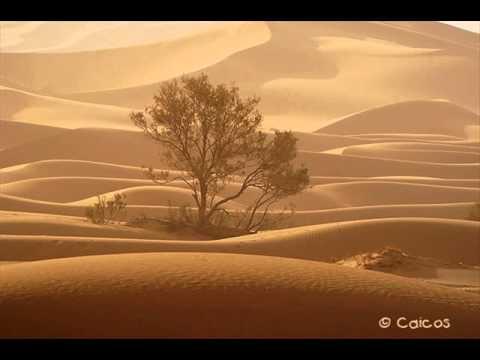 صحراء desert