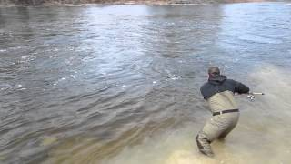 joe au sable river steelhead fishing