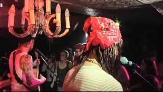 Budzillus - Stupid Song !