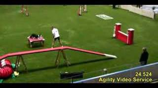 Repeat youtube video Agility WK 2007 Kate Vast Parcours team