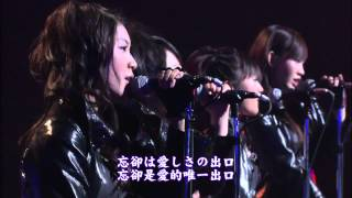 Watch Akb48 Blue Rose video